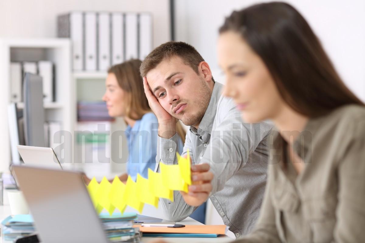 sueldo profesional microstock (6)