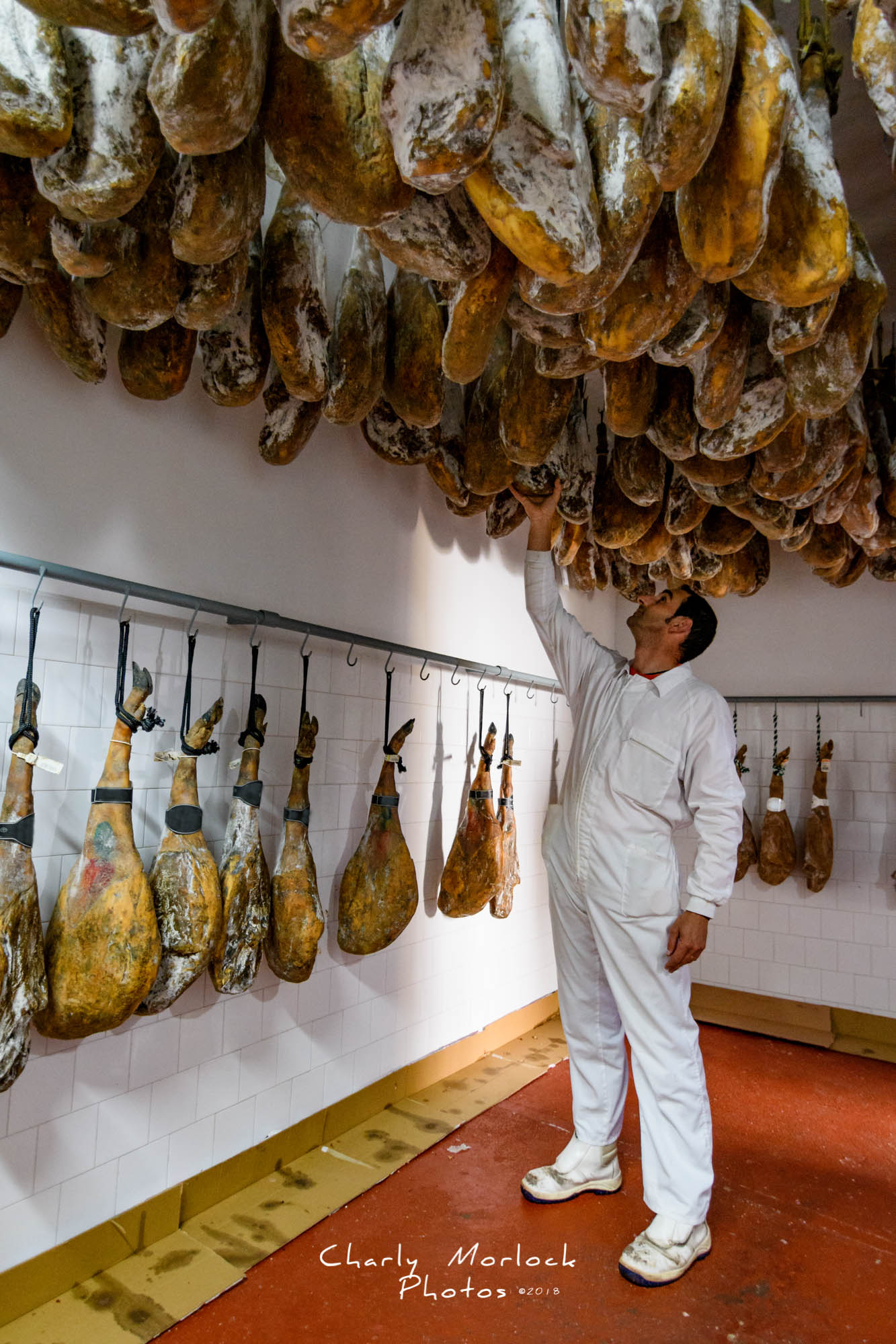 master craftsman butcher checking state of cure of a ham is natu
