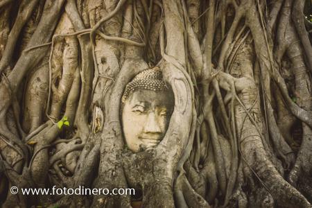 foto stock viaje tailandia