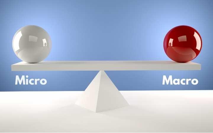 diferencias microstock macrostock